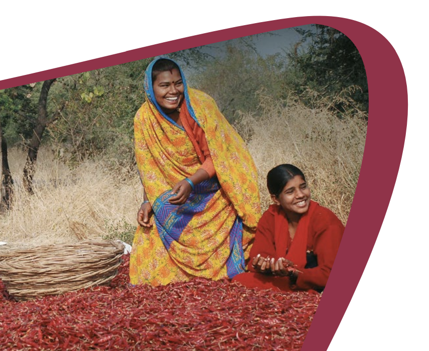 two indian girls smiling while looking into distance and sorting red peppers